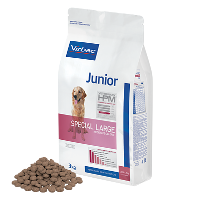 Junior Dog Special Large von Virbac